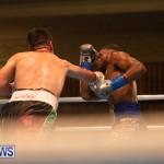 Bermuda Boxing Nikki Bascome Nov 2018 JM (50)