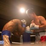 Bermuda Boxing Nikki Bascome Nov 2018 JM (61)