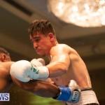 Bermuda Boxing Nikki Bascome Nov 2018 JM (71)