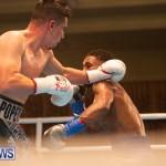 Bermuda Boxing Nikki Bascome Nov 2018 JM (76)