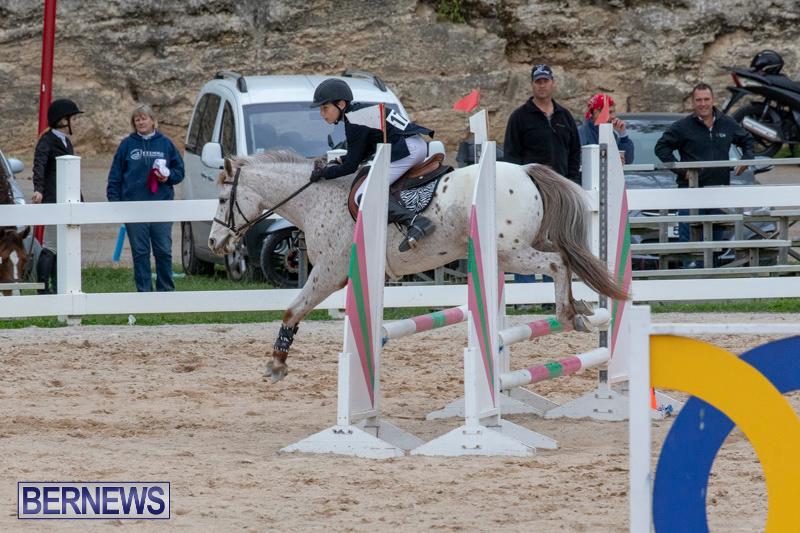 Bermuda-Equestrian-Federation-Jumper-Show-November-24-2018-0013
