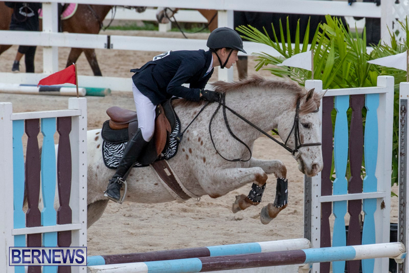 Bermuda-Equestrian-Federation-Jumper-Show-November-24-2018-0021