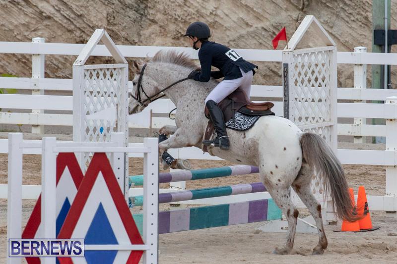Bermuda-Equestrian-Federation-Jumper-Show-November-24-2018-0025
