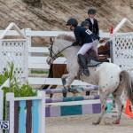 Bermuda Equestrian Federation Jumper Show, November 24 2018-0027