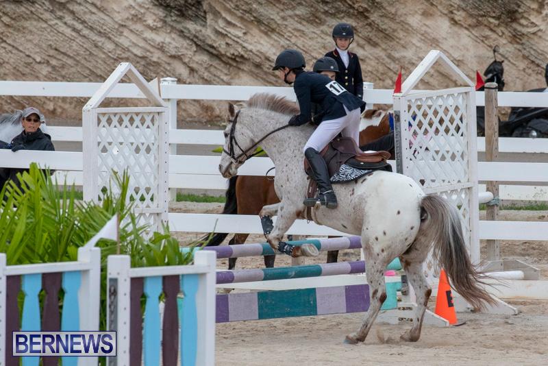 Bermuda-Equestrian-Federation-Jumper-Show-November-24-2018-0027