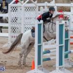 Bermuda Equestrian Federation Jumper Show, November 24 2018-0032