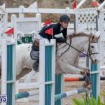 Bermuda Equestrian Federation Jumper Show, November 24 2018-0033