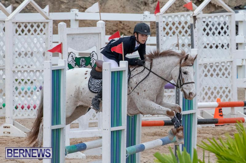 Bermuda-Equestrian-Federation-Jumper-Show-November-24-2018-0033