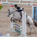 Bermuda Equestrian Federation Jumper Show, November 24 2018-0038