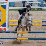 Bermuda Equestrian Federation Jumper Show, November 24 2018-0051