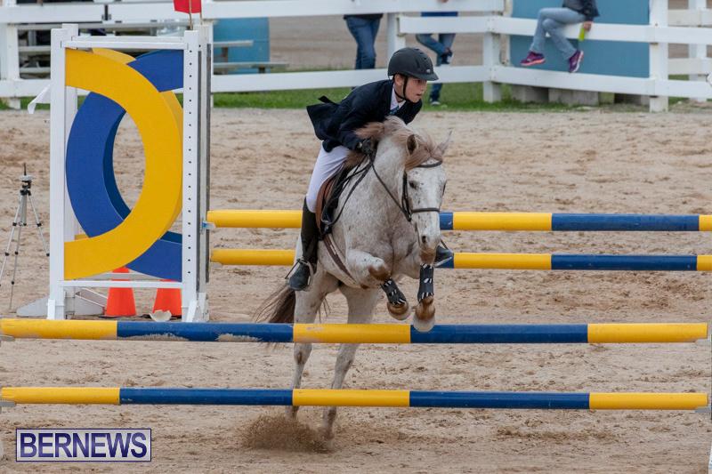 Bermuda-Equestrian-Federation-Jumper-Show-November-24-2018-0051