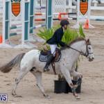 Bermuda Equestrian Federation Jumper Show, November 24 2018-0057