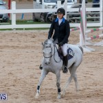 Bermuda Equestrian Federation Jumper Show, November 24 2018-0063