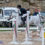 Bermuda Equestrian Federation Jumper Show, November 24 2018-0067