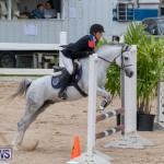 Bermuda Equestrian Federation Jumper Show, November 24 2018-0073