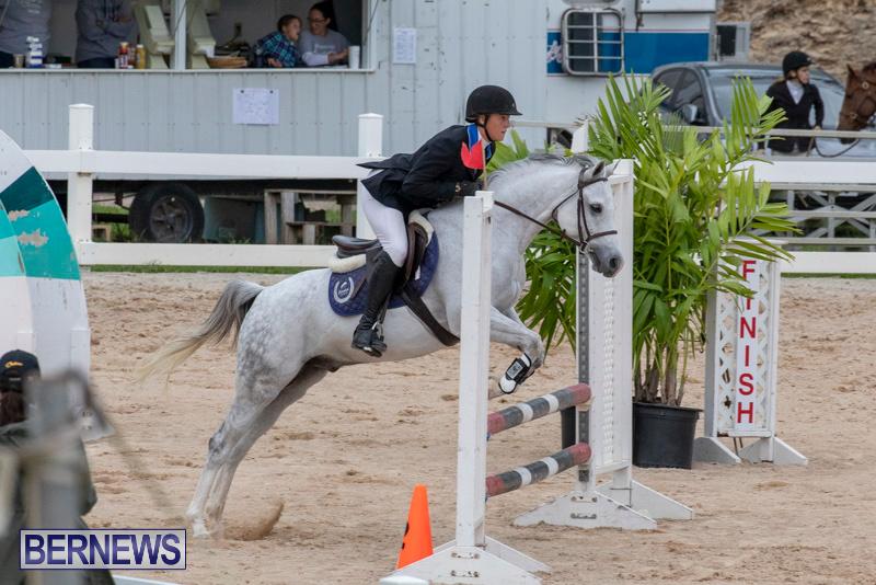 Bermuda-Equestrian-Federation-Jumper-Show-November-24-2018-0073