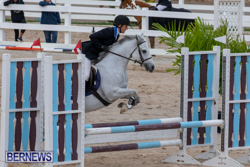 Bermuda-Equestrian-Federation-Jumper-Show-November-24-2018-0080