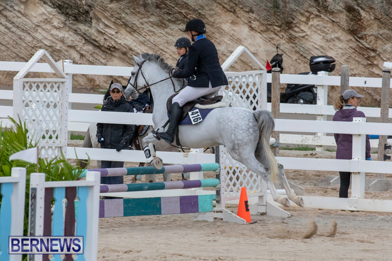 Bermuda-Equestrian-Federation-Jumper-Show-November-24-2018-0089