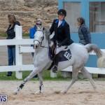 Bermuda Equestrian Federation Jumper Show, November 24 2018-0094