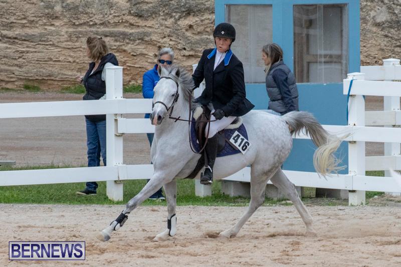 Bermuda-Equestrian-Federation-Jumper-Show-November-24-2018-0094