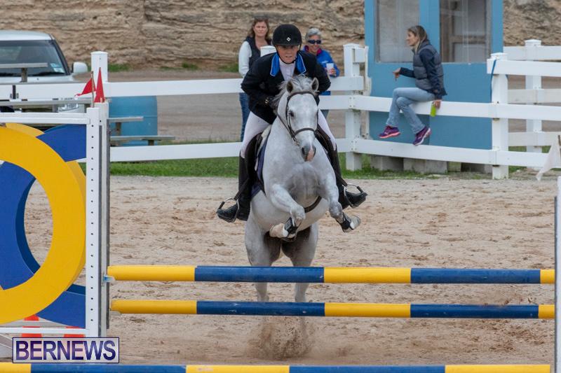 Bermuda-Equestrian-Federation-Jumper-Show-November-24-2018-0107