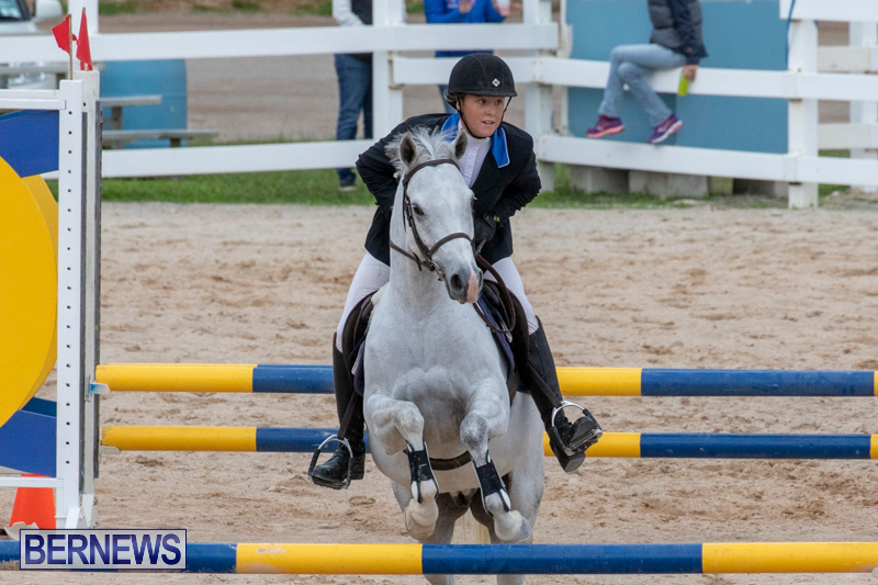 Bermuda-Equestrian-Federation-Jumper-Show-November-24-2018-0113