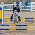 Bermuda Equestrian Federation Jumper Show, November 24 2018-0114