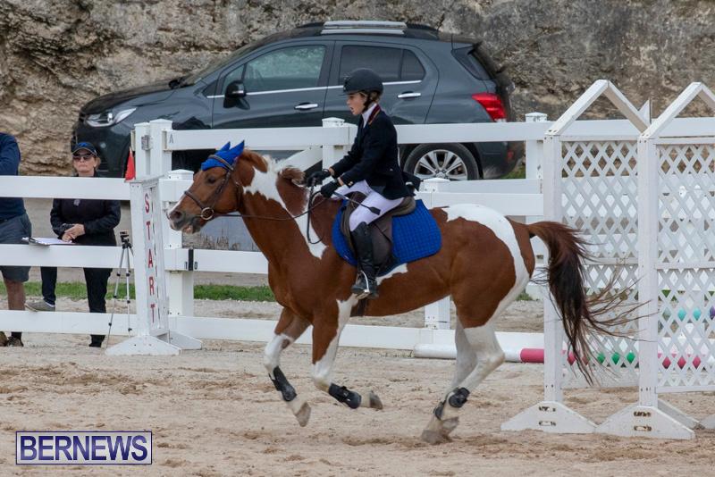 Bermuda-Equestrian-Federation-Jumper-Show-November-24-2018-0149