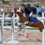Bermuda Equestrian Federation Jumper Show, November 24 2018-0152