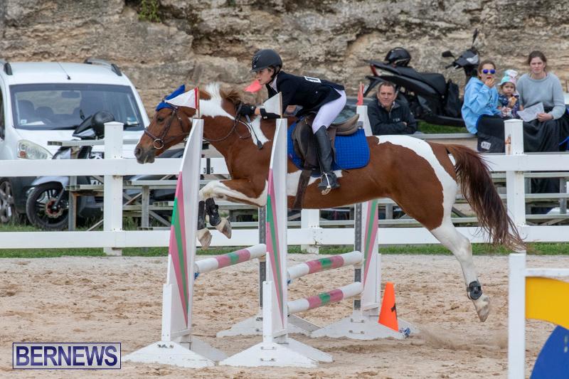 Bermuda-Equestrian-Federation-Jumper-Show-November-24-2018-0153
