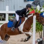Bermuda Equestrian Federation Jumper Show, November 24 2018-0157