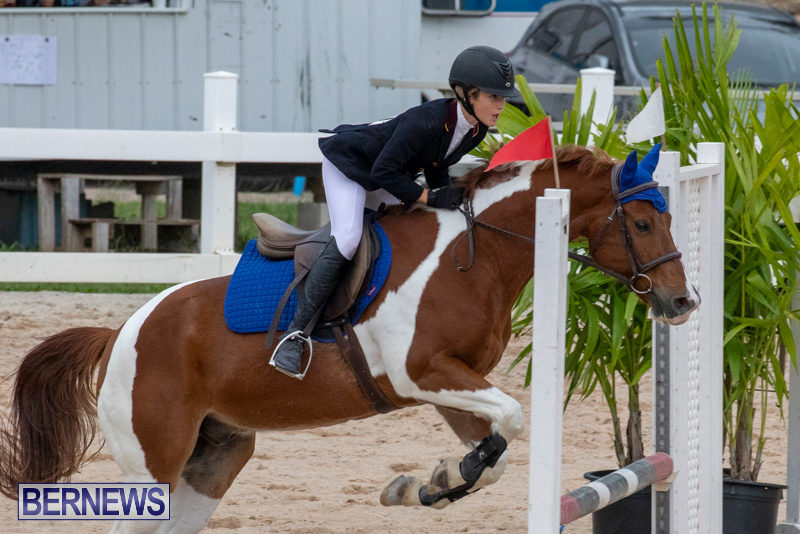 Bermuda-Equestrian-Federation-Jumper-Show-November-24-2018-0157