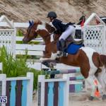 Bermuda Equestrian Federation Jumper Show, November 24 2018-0171