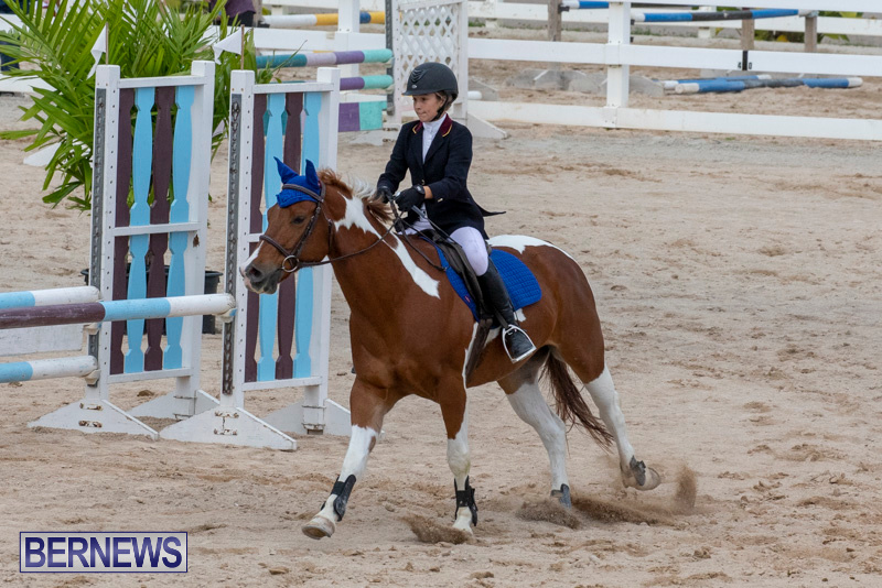 Bermuda-Equestrian-Federation-Jumper-Show-November-24-2018-0189