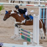Bermuda Equestrian Federation Jumper Show, November 24 2018-0194