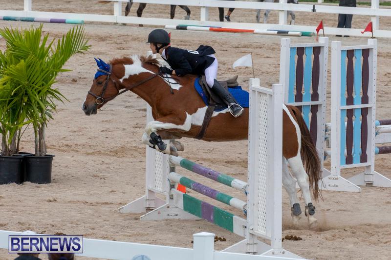 Bermuda-Equestrian-Federation-Jumper-Show-November-24-2018-0194
