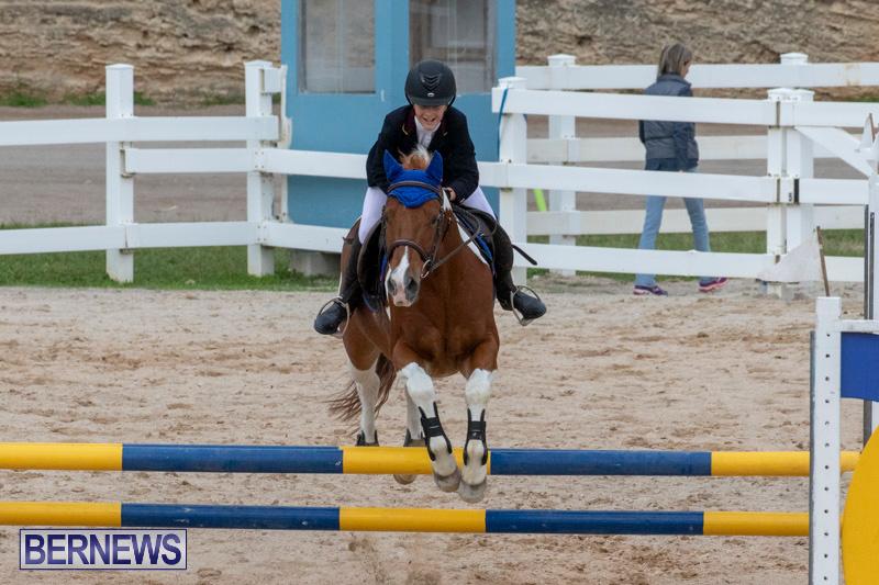Bermuda-Equestrian-Federation-Jumper-Show-November-24-2018-0198