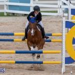 Bermuda Equestrian Federation Jumper Show, November 24 2018-0203