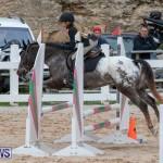 Bermuda Equestrian Federation Jumper Show, November 24 2018-0231