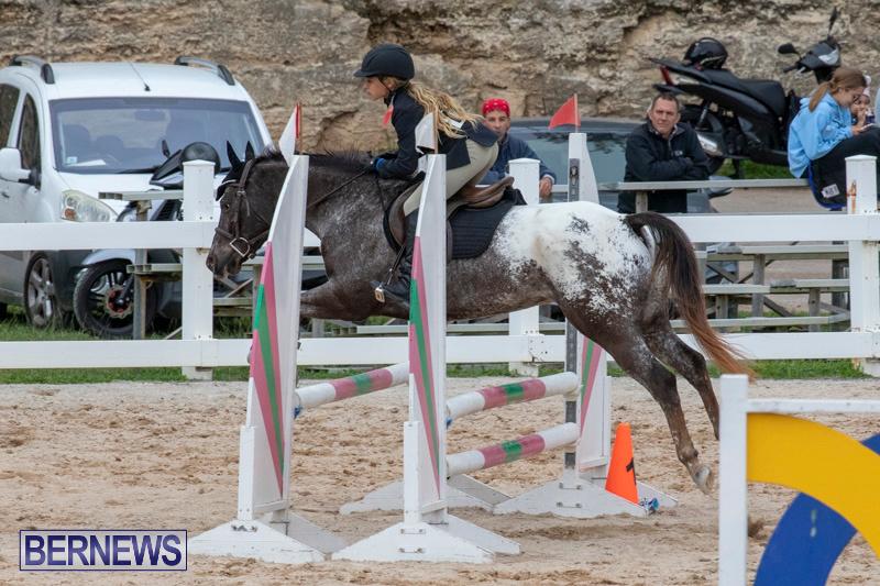 Bermuda-Equestrian-Federation-Jumper-Show-November-24-2018-0231