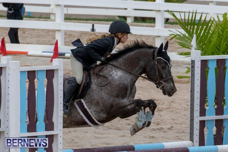 Bermuda-Equestrian-Federation-Jumper-Show-November-24-2018-0240