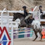 Bermuda Equestrian Federation Jumper Show, November 24 2018-0245