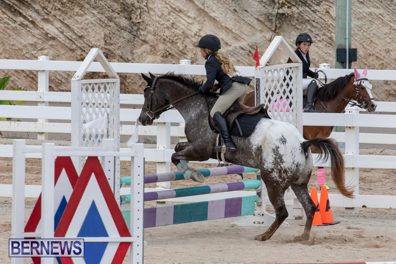 Bermuda-Equestrian-Federation-Jumper-Show-November-24-2018-0245