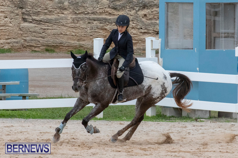 Bermuda-Equestrian-Federation-Jumper-Show-November-24-2018-0258