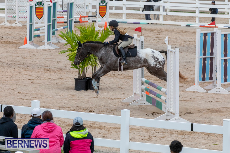 Bermuda-Equestrian-Federation-Jumper-Show-November-24-2018-0268