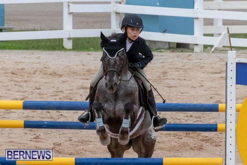 Bermuda-Equestrian-Federation-Jumper-Show-November-24-2018-0276
