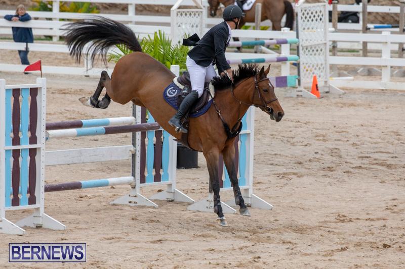 Bermuda-Equestrian-Federation-Jumper-Show-November-24-2018-9859