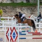 Bermuda Equestrian Federation Jumper Show, November 24 2018-9860