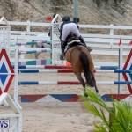 Bermuda Equestrian Federation Jumper Show, November 24 2018-9889