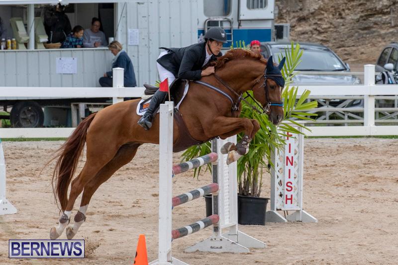 Bermuda-Equestrian-Federation-Jumper-Show-November-24-2018-9905